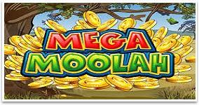 Mega Moolah Casino Jackpotspill